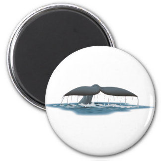 Whale Watcher Magnet