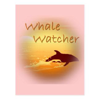 Whale Watcher  orange Postcard