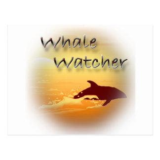 Whale Watcher  red Postcard