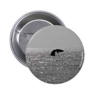 Whale-watching - Southern right whale print Pinback Buttons