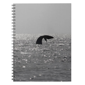 Whale-watching - Southern right whale print Notebook