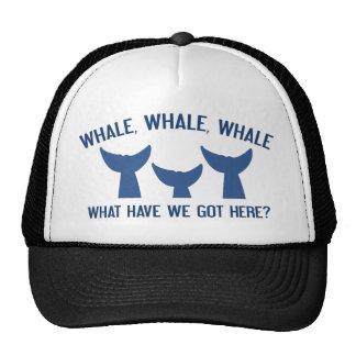 Whale Whale Whale Trucker Hat