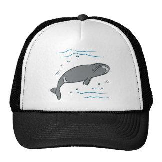 Whale Whales Marine Mammals Cetacea Ocean Art Hat