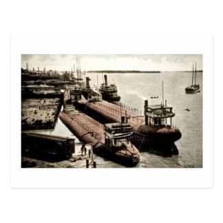 Whalebacks at Belle Isle, Michigan Postcard