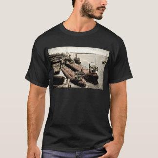 Whalebacks at Belle Isle, Michigan T-Shirt