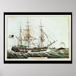 Whaler americano, grabado por el curtidor de Natha Póster