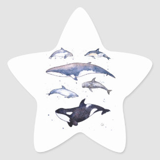 Whales and Dolphins of Scotland Star Sticker