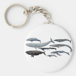 Whales and right whales keychain