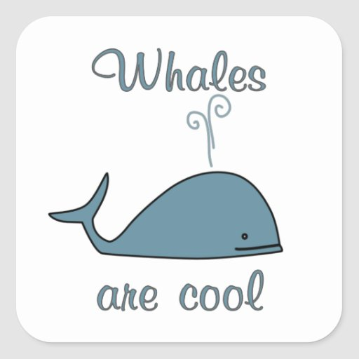 Whales are Cool Square Sticker