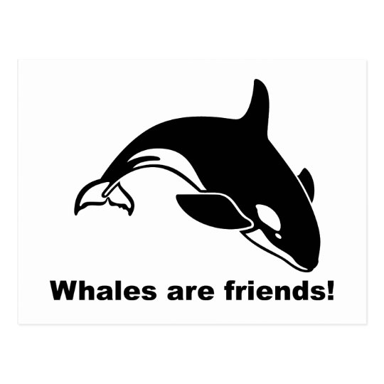 Whales Are Friends Postcard