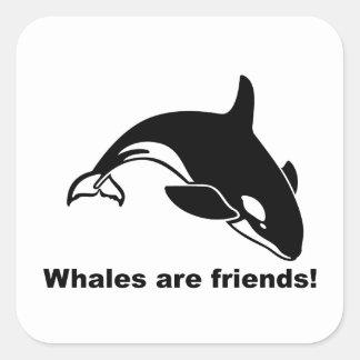 Whales Are Friends Square Sticker