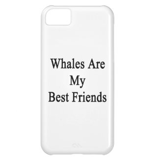 Whales Are My Best Friends iPhone 5C Case