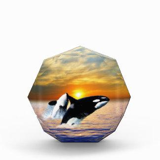 Whales at sunset acrylic award