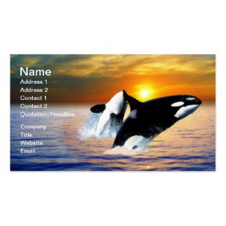 Whales at sunset business card