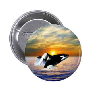 Whales at sunset buttons