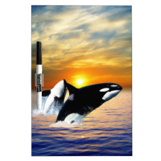 Whales at sunset dry erase board