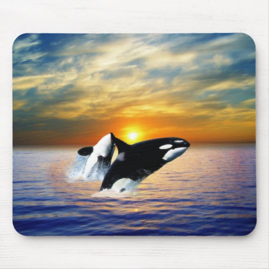 Whales at sunset mouse pad