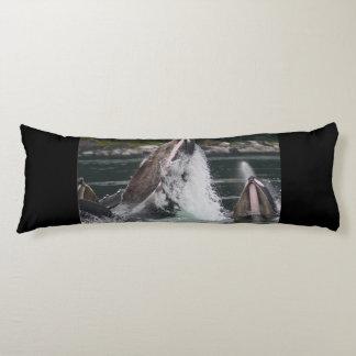 whales body pillow