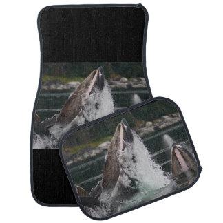 whales car mat