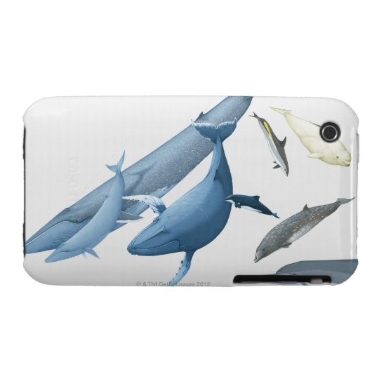 Whales Case-Mate iPhone 3 Case