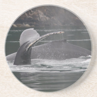 whales coaster
