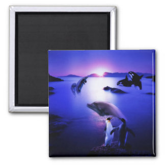 Whales dolphins penguins ocean sunset 2 inch square magnet