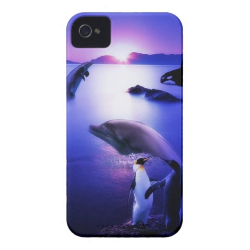 Whales dolphins penguins ocean sunset iPhone 4 covers