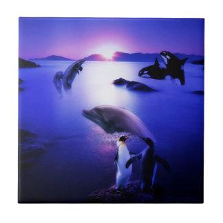 Whales dolphins penguins ocean sunset ceramic tile