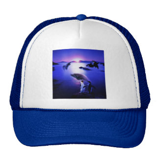 Whales dolphins penguins ocean sunset hats