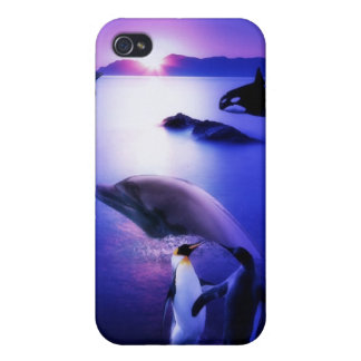 Whales dolphins penguins ocean sunset iPhone 4/4S case