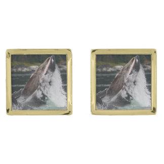whales gold cufflinks