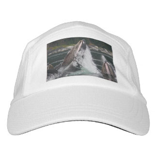 whales hat