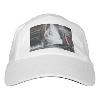 whales headsweats hat