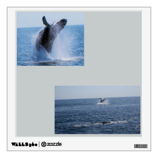 Whales in the wild.... wall sticker