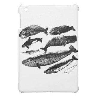 whales iPad mini case