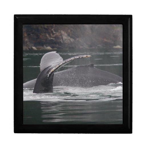 whales keepsake box