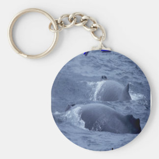 whales keychains