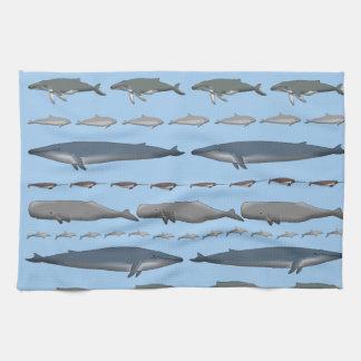 Whales Kitchen Towel