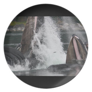 whales melamine plate