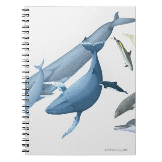 Whales Spiral Note Book