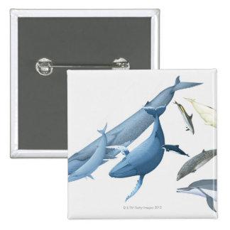 Whales Pinback Button