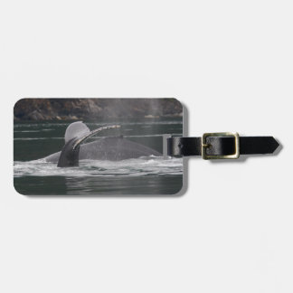 whales tag for luggage