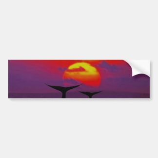 Whales tail at sunset car bumper sticker
