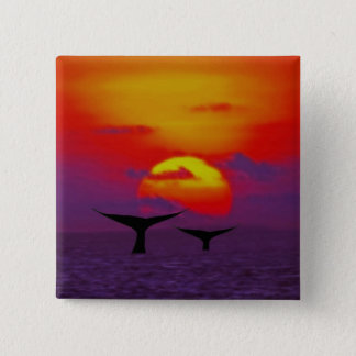 Whales tail at sunset pinback button