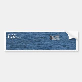 Whales Tails Ocean Bumper Sticker