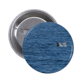 Whales Tails Ocean Button