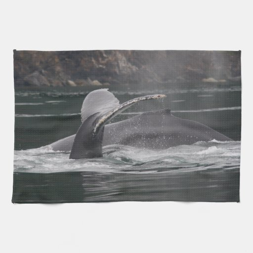 whales towel