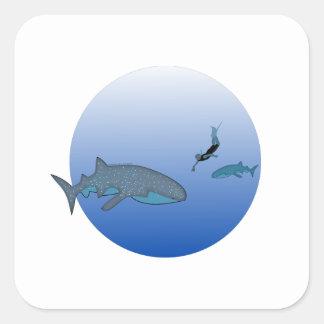 Whaleshark Sticker