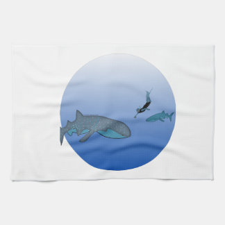 Whalesharks and a Free Diver Towel
