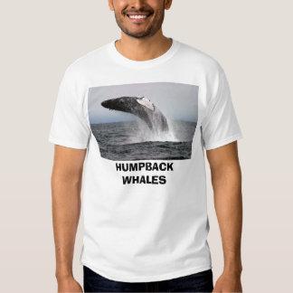 whaleza, HUMPBACK WHALES Shirt